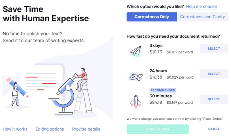 Grammarly Optional Paid Professional Writing Help